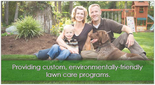 lawn care newnan ga